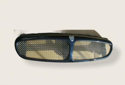 Grille mesh type R C2S43404XXX CALANDRE